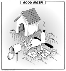 Property Taxes - Good Grief!