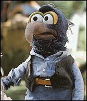 Gonzo the Great!