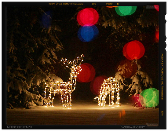 Fake Reindeer Lights