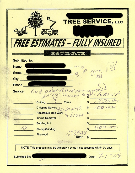 sample receipt for services provided