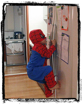 Spider Fridge