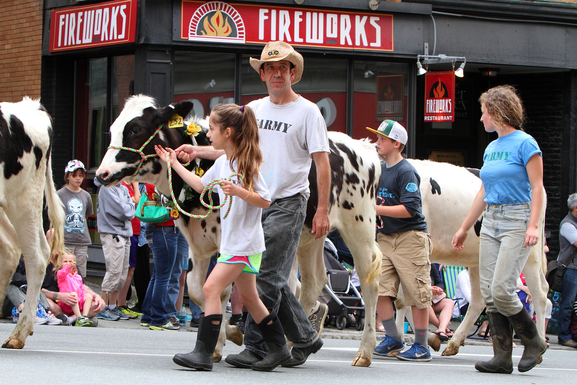 Strolling of the Heifers 2015